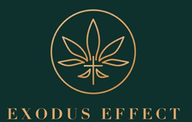 Exodus Effect PDF Book